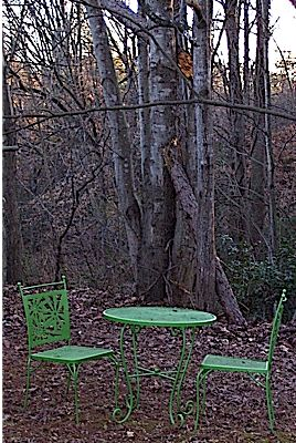 Backyard chairs